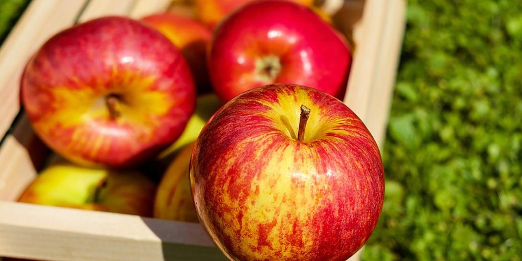 Frutas del mes de Octubre